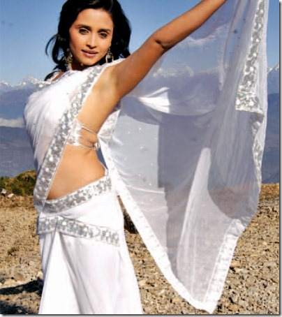 sanchita_20091216hot white saree